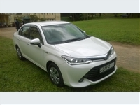 Axio Hybrid for Rent - Rs. 5000 Daily